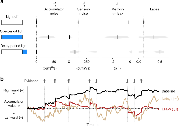 Cerebellar disruption impairs working memory during evidence