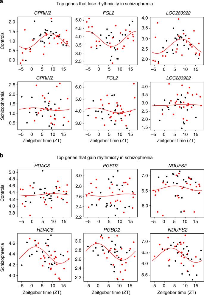 Diurnal rhythms in gene expression in the prefrontal cortex in