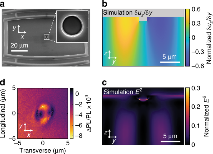 Correlating dynamic strain and photoluminescence of solid