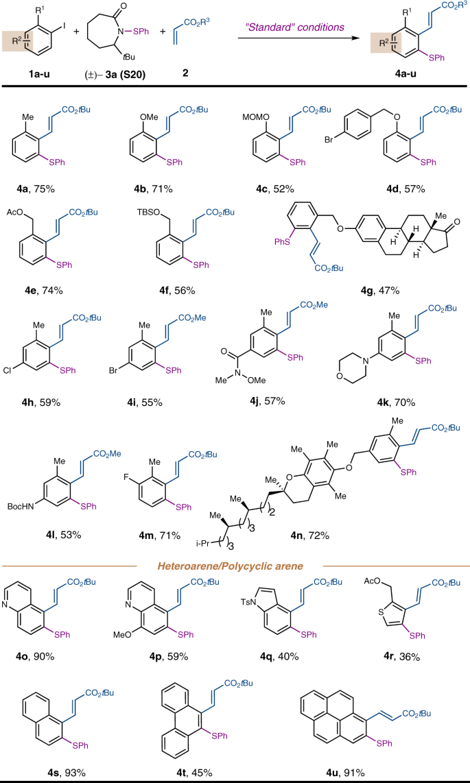 Sulfenamide-enabled ortho thiolation of aryl iodides via