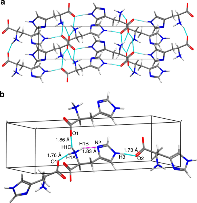 Understanding Hydrogen Bonding Structures Of Molecular Crystals Via Electron And Nmr Nanocrystallography Nature Communications