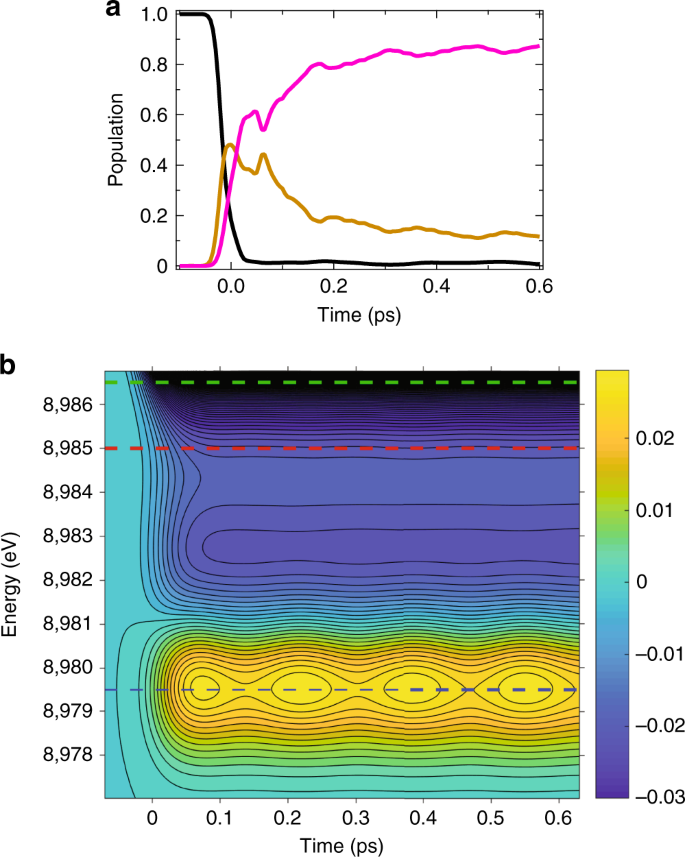 Tracking multiple components of a nuclear wavepacket in photoexcited