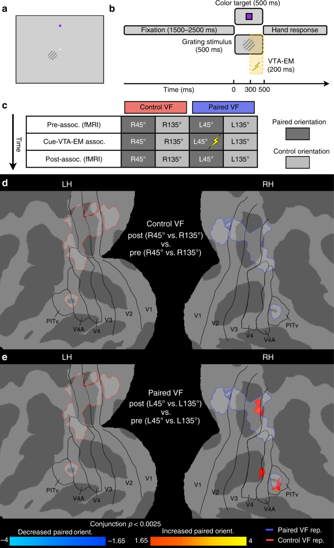 Ventral midbrain stimulation induces perceptual learning and