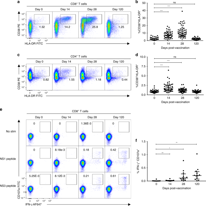 Dissecting the heterogeneity of DENV vaccine-elicited cellular immunit