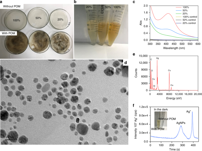 Significant contribution of metastable particulate organic matter to n