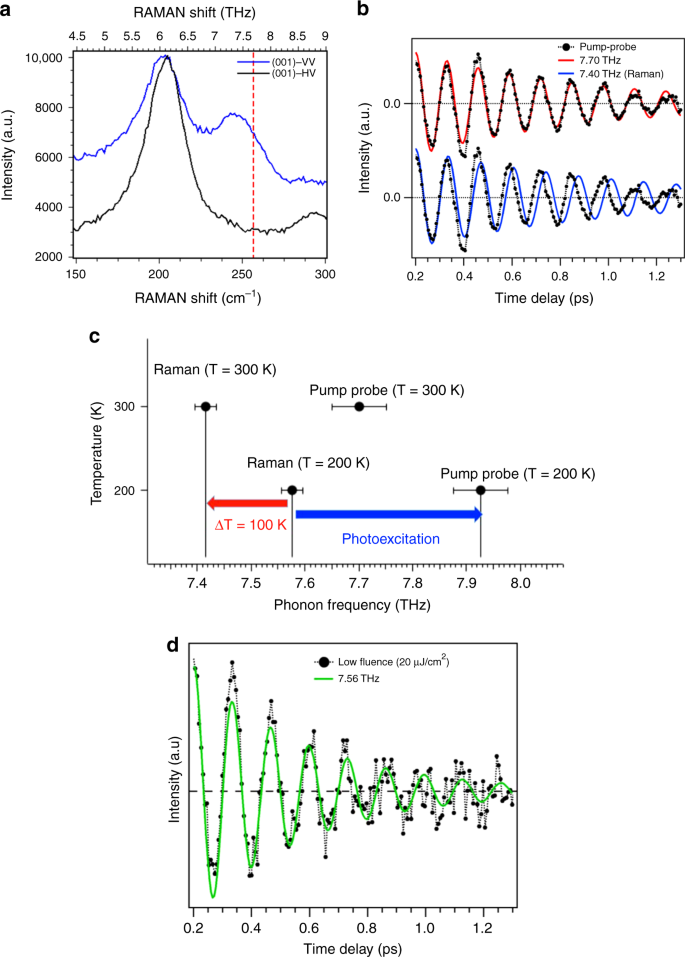 Reply to: Ultrafast evolution and transient phases of a