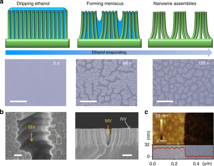 Micro-/nano-voids guided two-stage film cracking on bioinspired assemb