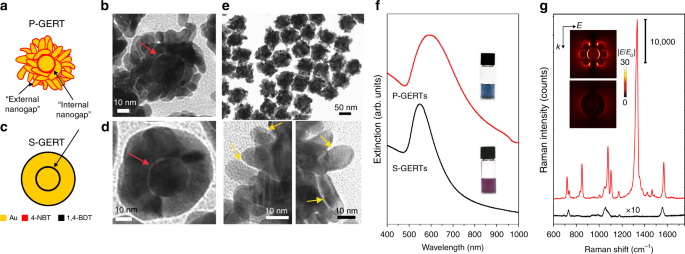Ultrabright gap-enhanced Raman tags for high-speed bioimaging