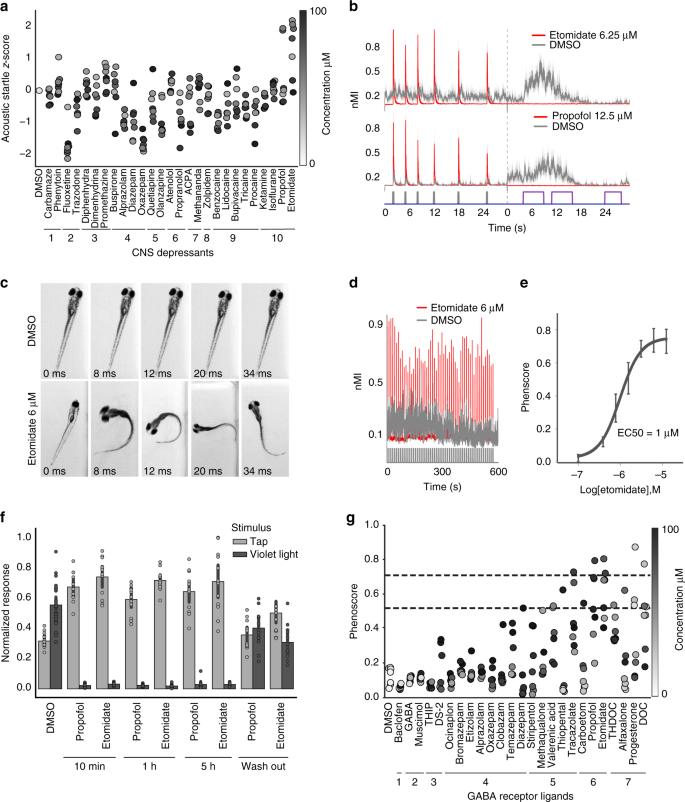 Zebrafish behavioural profiling identifies GABA and