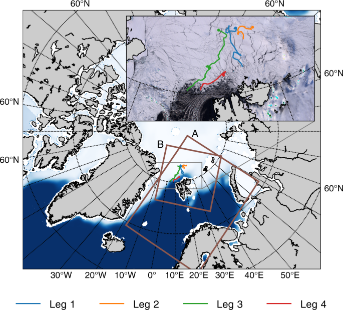 On the warm bias in atmospheric reanalyses induced by the missing snow