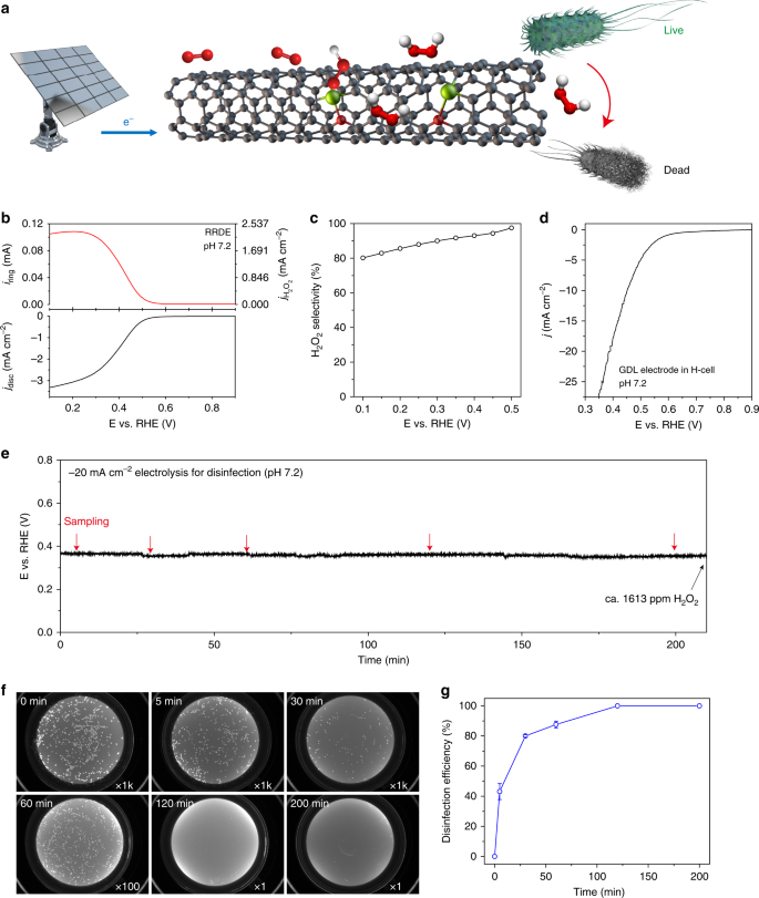 Highly selective oxygen reduction to hydrogen peroxide on