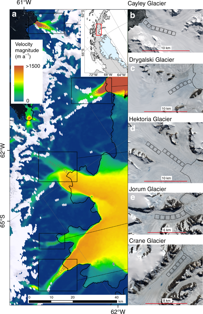 Rapid accelerations of Antarctic Peninsula outlet glaciers driven by s