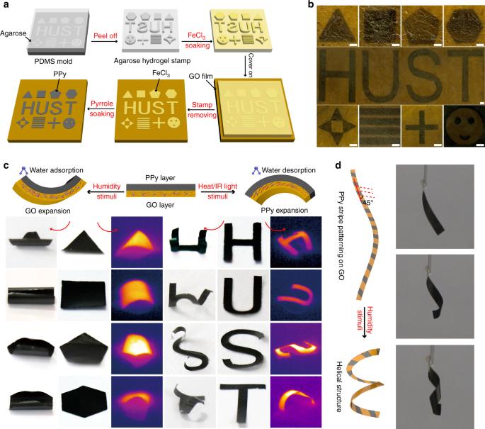 Multi-stimuli-responsive programmable biomimetic actuator