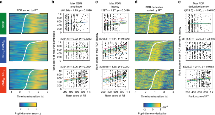 Pupil-linked phasic arousal evoked by violation but not