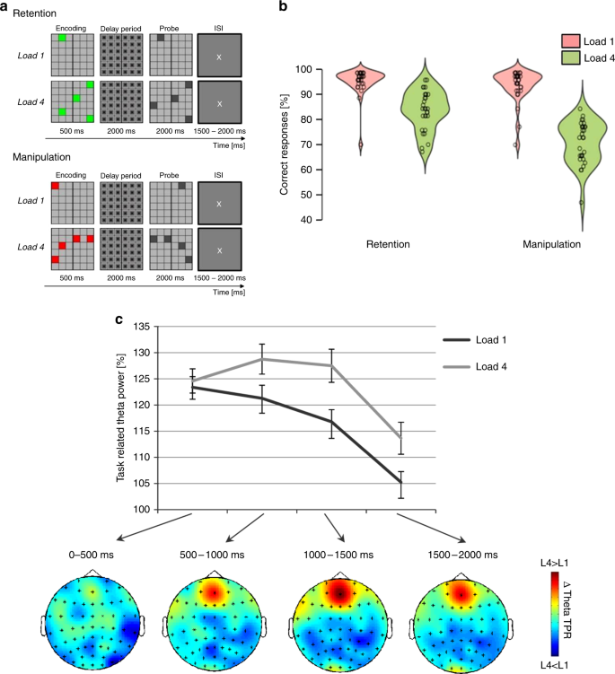 Dynamic regulation of interregional cortical communication by slow bra