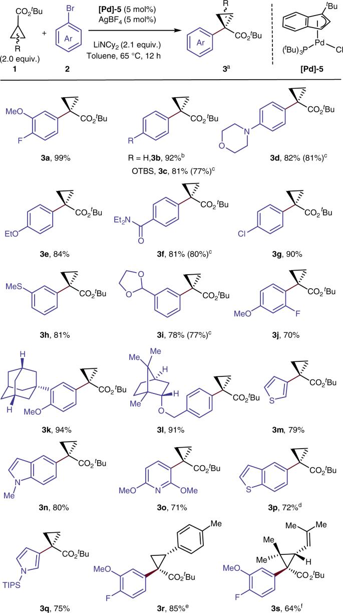 Palladium-catalyzed α-arylation for the addition of small