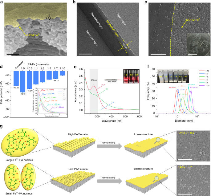 Metal-coordinated sub-10nm membranes for water purification