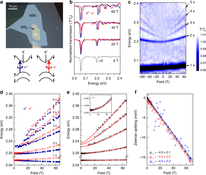 Revealing exciton masses and dielectric properties of monolayer semico