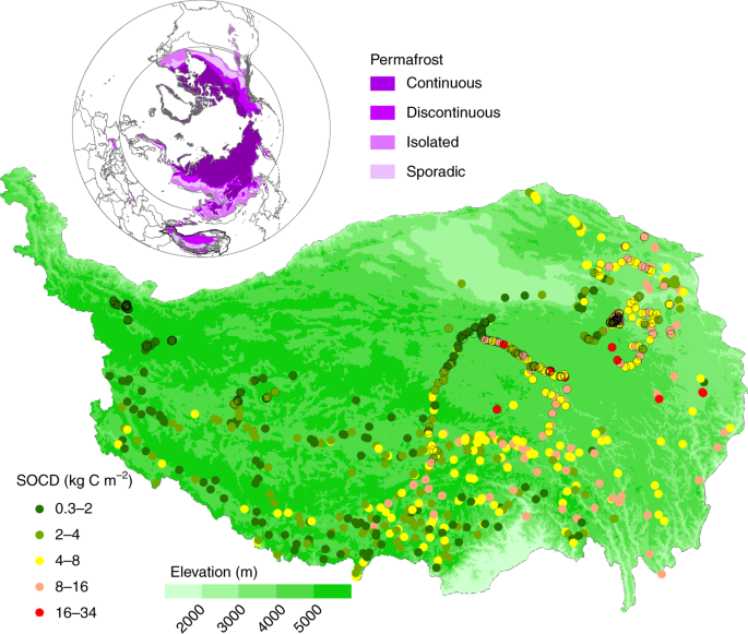 The paleoclimatic footprint in the soil carbon stock of the Tibetan pe