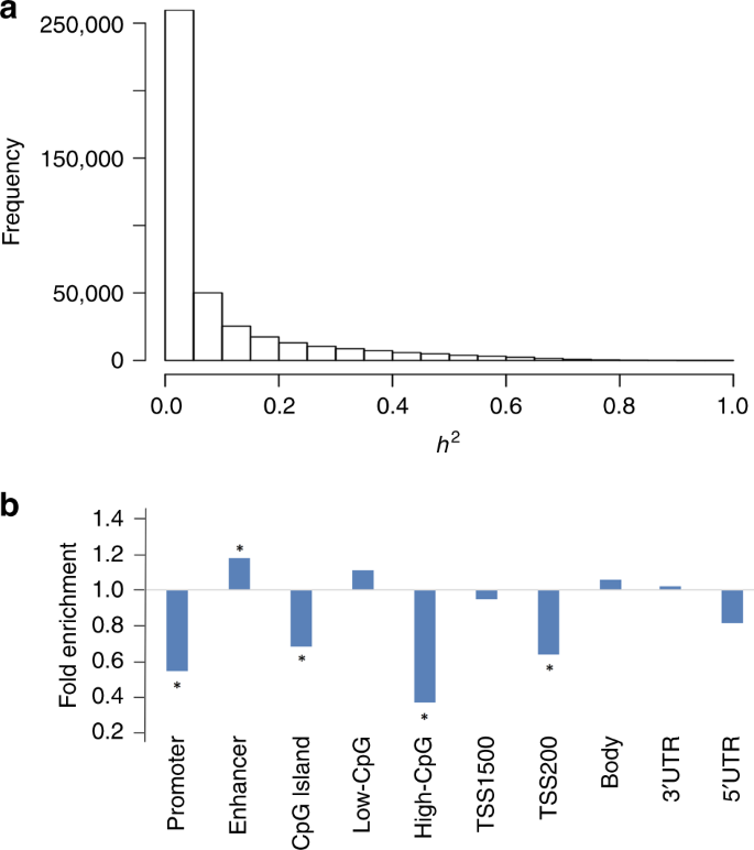 Genome-wide identification of DNA methylation QTLs in whole blood high