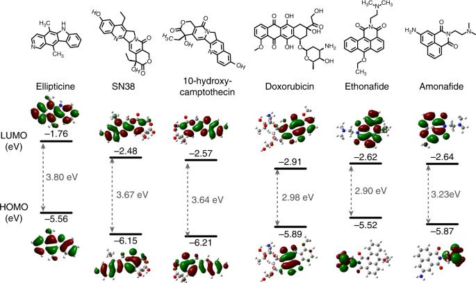 Repurposing DNA-binding agents as H-bonded organic semiconductors