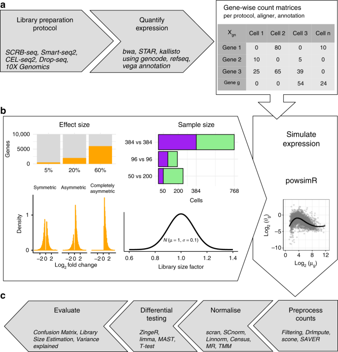 A systematic evaluation of single cell RNA-seq analysis pipelines