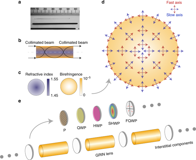 Complex vectorial optics through gradient index lens cascades