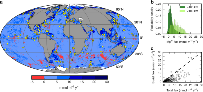 The role of marine sediment diagenesis in the modern oceanic magnesium