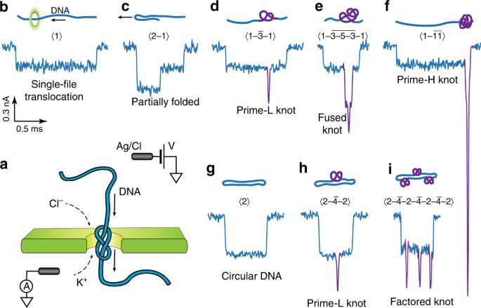 Complex DNA knots detected with a nanopore sensor