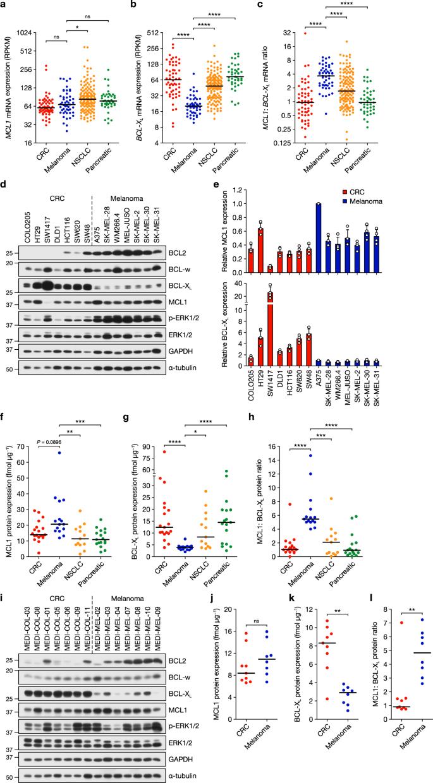 Targeting melanoma's MCL1 bias unleashes the apoptotic potential