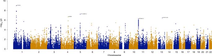 Transcriptome-wide association study of attention deficit hyperactivit