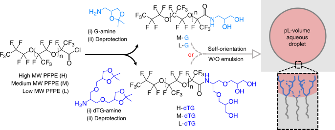 Dendronized fluorosurfactant for highly stable water-in-fluorinated oi