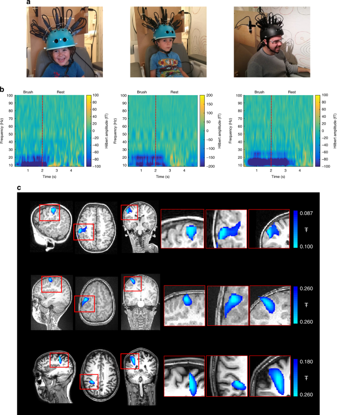 A tool for functional brain imaging with lifespan compliance