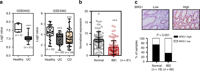 BRG1 attenuates colonic inflammation and tumorigenesis through autopha
