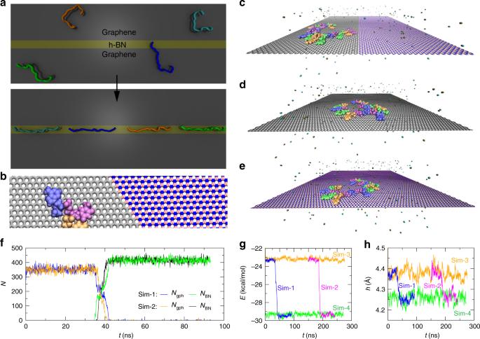 Spontaneous ssDNA stretching on graphene and hexagonal boron nitride i