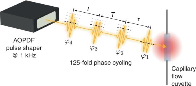 Rapid multiple-quantum three-dimensional fluorescence spectroscopy dis