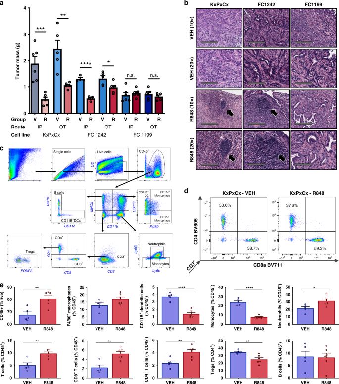 The TLR7/8 agonist R848 remodels tumor and host responses to promote s