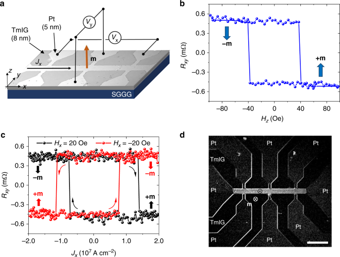 High-speed domain wall racetracks in a magnetic insulator