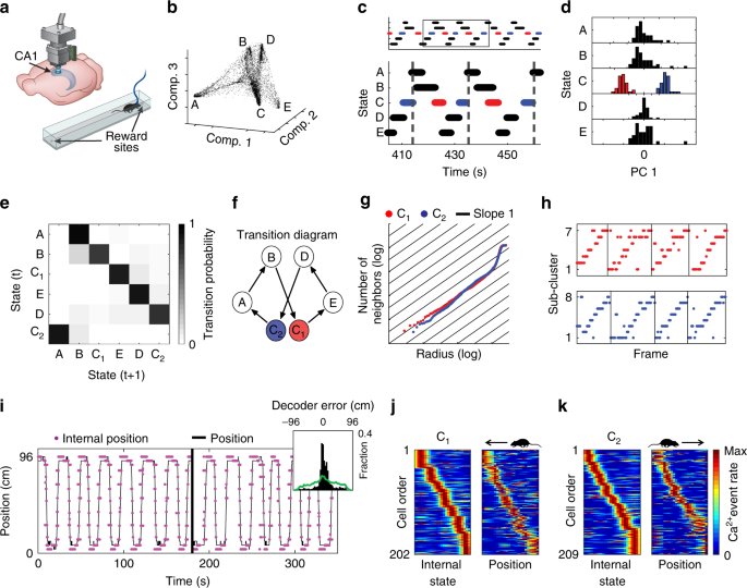 Revealing neural correlates of behavior without behavioral measurement