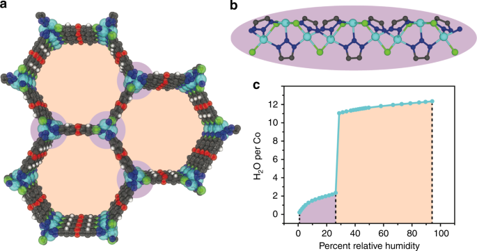 Hydrogen bonding structure of confined water templated by a metal-orga