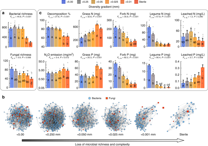Fungal-bacterial diversity and microbiome complexity predict ecosystem