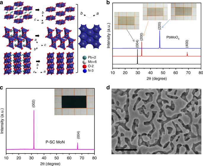 Metallic porous nitride single crystals at two-centimeter scale delive