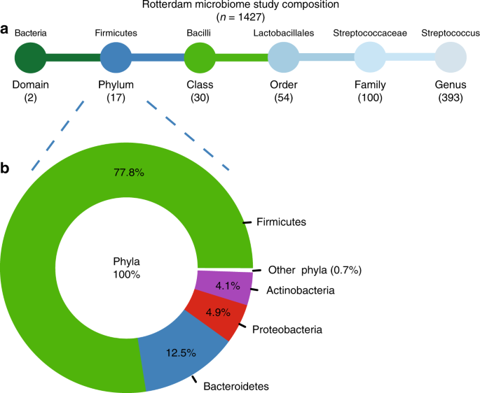 Intestinal microbiome composition and its relation to joint pain and i
