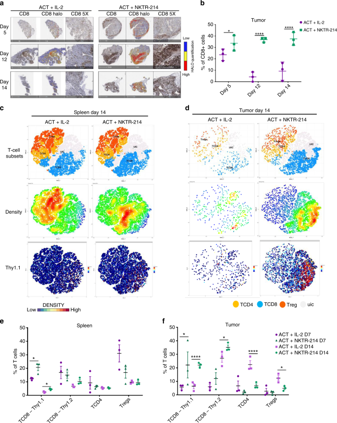 Persistence of adoptively transferred T cells with a kinetically ...