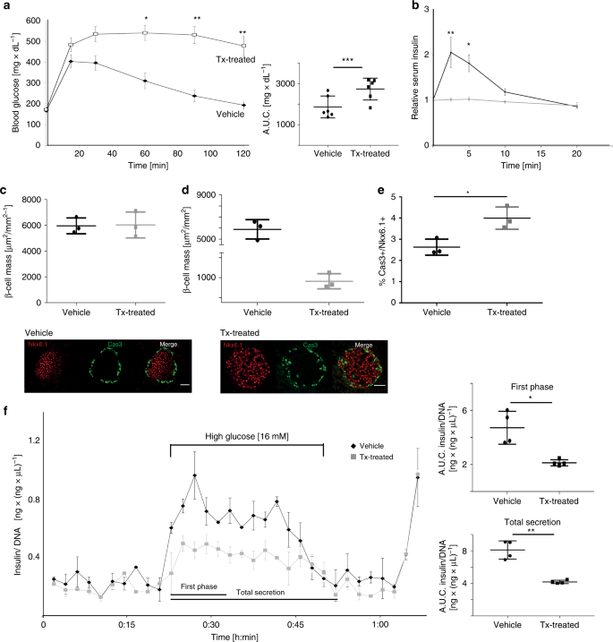 Glucose homeostasis is regulated by pancreatic β-cell cilia via e
