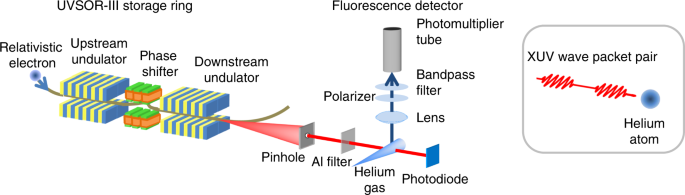 Coherent control in the extreme ultraviolet and attosecond regime by s