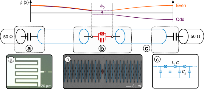 Observation of quantum many-body effects due to zero point fluctuation