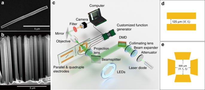 Light programmable micro/nanomotors with optically tunable in-phase el