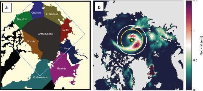 The role of cyclone activity in snow accumulation on Arctic sea ice