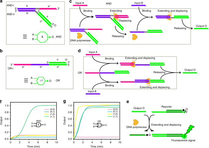 High-efficiency and integrable DNA arithmetic and logic system based o